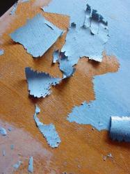 Pelures-bleues.jpg